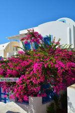 Oia Santorini | Cycladen Griekenland | Foto 1191 - Foto van De Griekse Gids
