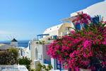 Oia Santorini | Cycladen Griekenland | Foto 1192 - Foto van De Griekse Gids