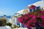 Oia Santorini | Cycladen Griekenland | Foto 1193 - Foto van De Griekse Gids