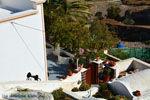 Pyrgos Santorini | Cycladen Griekenland | Foto 107 - Foto van De Griekse Gids