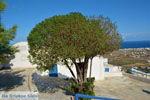 Pyrgos Santorini | Cycladen Griekenland | Foto 118 - Foto van De Griekse Gids
