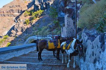 Fira Santorini | Cycladen Griekenland  | Foto 0064 - Foto van https://www.grieksegids.nl/fotos/santorini/normaal/fira-santorini-064.jpg