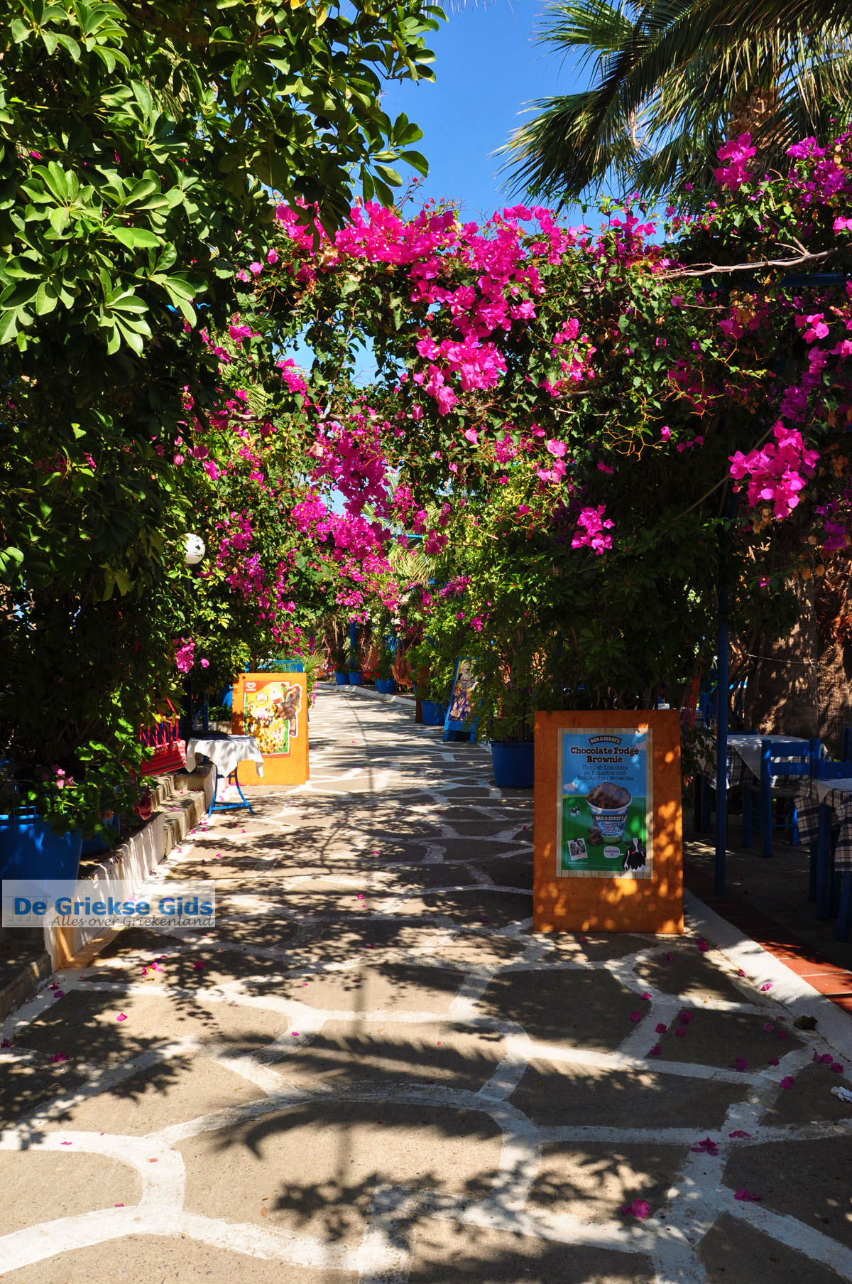 foto Sissi | Lassithi Kreta | Foto Griekse Gids nr 37