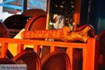 Sissi | Lassithi Kreta | Foto Griekse Gids nr 26 - Foto van De Griekse Gids