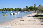 Stranden en natuur bij Vourvourou | Sithonia Chalkidiki | De Griekse Gids foto 10 - Foto van De Griekse Gids