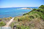 Stranden en natuur bij Vourvourou | Sithonia Chalkidiki | De Griekse Gids foto 31 - Foto van De Griekse Gids