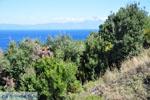 Stranden en natuur bij Vourvourou | Sithonia Chalkidiki | De Griekse Gids foto 34 - Foto van De Griekse Gids
