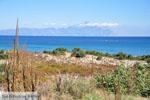Sarti | Sithonia Chalkidiki | De Griekse Gids foto 11 - Foto van De Griekse Gids