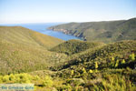 Ergens tussen Kalamitsi en Port Koufo | Sithonia Chalkidiki | De Griekse Gids foto 1 - Foto van De Griekse Gids