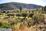 Porto Koufo | Sithonia Chalkidiki | De Griekse Gids foto 1 - Foto van De Griekse Gids