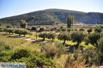 Porto Koufo | Sithonia Chalkidiki | De Griekse Gids foto 2 - Foto van De Griekse Gids
