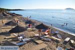 Porto Karras | Sithonia Chalkidiki | De Griekse Gids foto 18 - Foto van De Griekse Gids