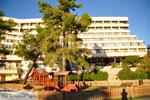 Porto Karras | Sithonia Chalkidiki | De Griekse Gids foto 25 - Foto van De Griekse Gids