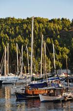 Porto Karras | Sithonia Chalkidiki | De Griekse Gids foto 29 - Foto van De Griekse Gids
