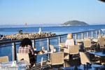 Porto Karras | Sithonia Chalkidiki | De Griekse Gids foto 36 - Foto van De Griekse Gids