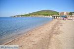 Psakoudia tot Gerakini | Sithonia Chalkidiki | De Griekse Gids foto 3 - Foto van De Griekse Gids