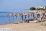 Psakoudia tot Gerakini | Sithonia Chalkidiki | De Griekse Gids foto 5 - Foto van De Griekse Gids