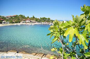 Ormos Panagias Sithonia | Chalkidiki | Griekenland 15 - Foto van De Griekse Gids