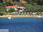 Troulos-strand Skiathos foto 3 - Foto van De Griekse Gids