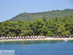 GriechenlandWeb.de Strand Koukounaries - Insel Skiathos - foto 1 - Foto GriechenlandWeb.de