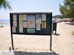 Het mooie strand van Koukounaries - Skiathos - foto 6 - Foto van De Griekse Gids