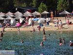 GriechenlandWeb.de Koukounaries Skiathos - Foto GriechenlandWeb.de