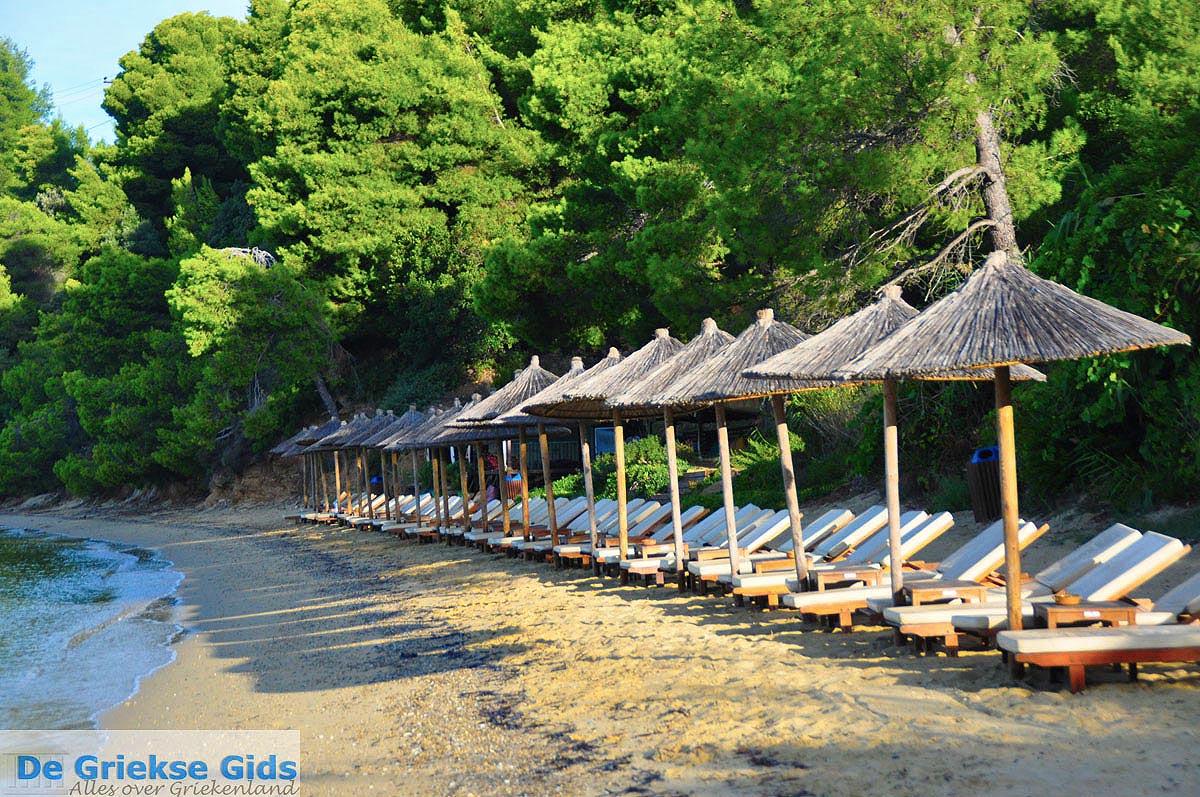 foto Maratha beach bij Koukounaries | Skiathos Sporaden | De Griekse Gids foto 9