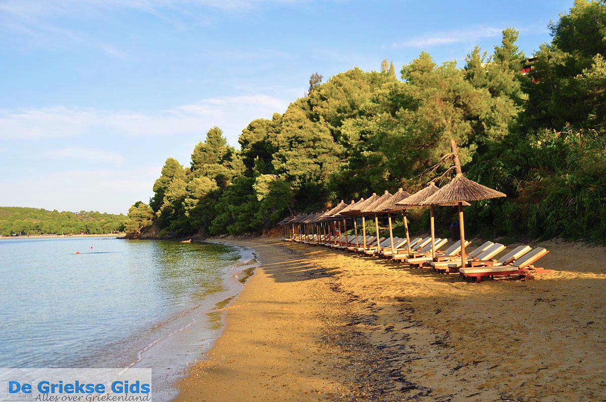 Koukounaries skiathos informatie en tips koukounaries for Skiathos hotels