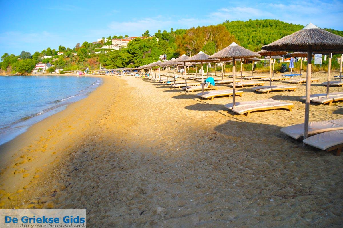 foto Troulos beach | Skiathos Sporaden | De Griekse Gids foto 5