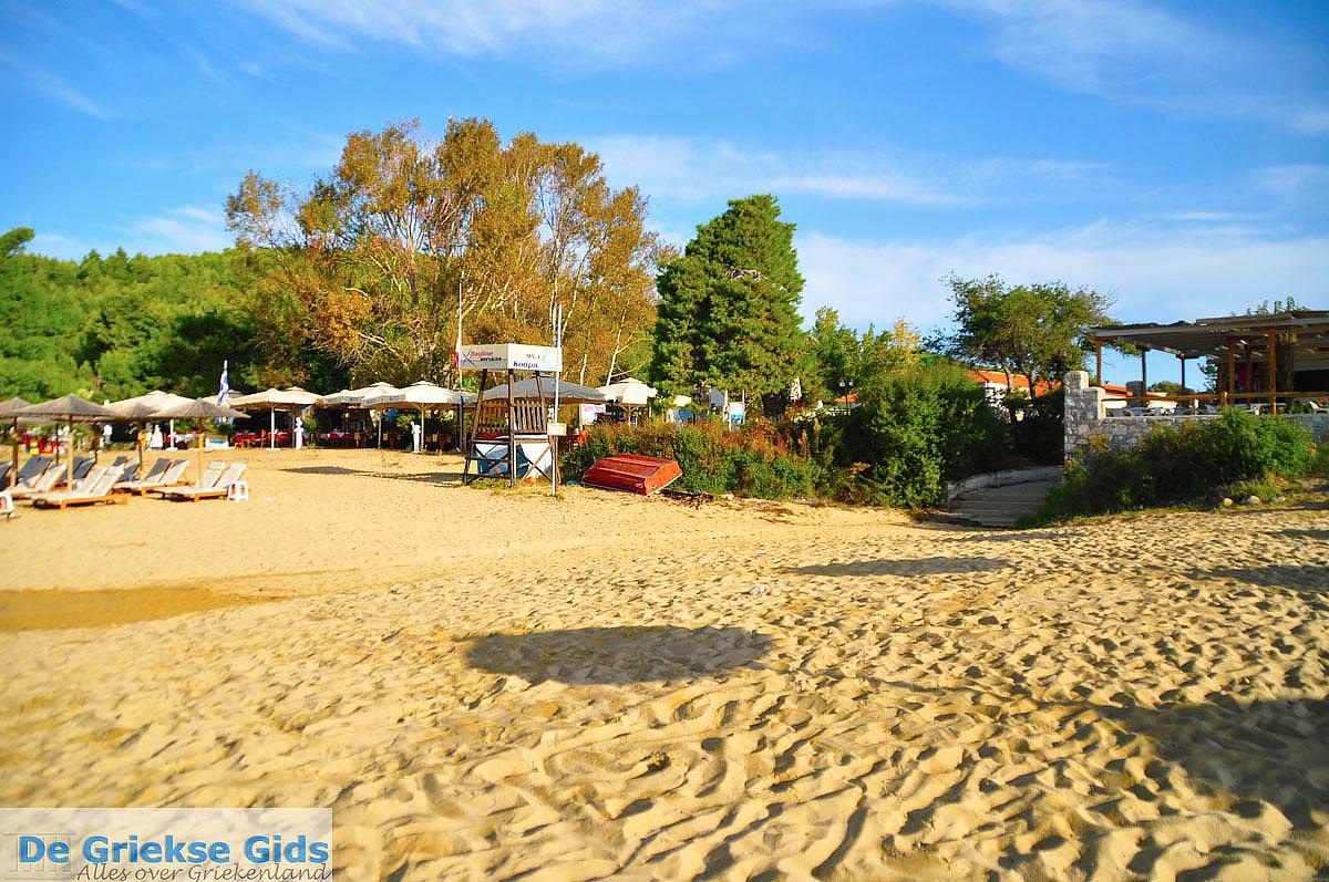 foto Troulos beach   Skiathos Sporaden   De Griekse Gids foto 8