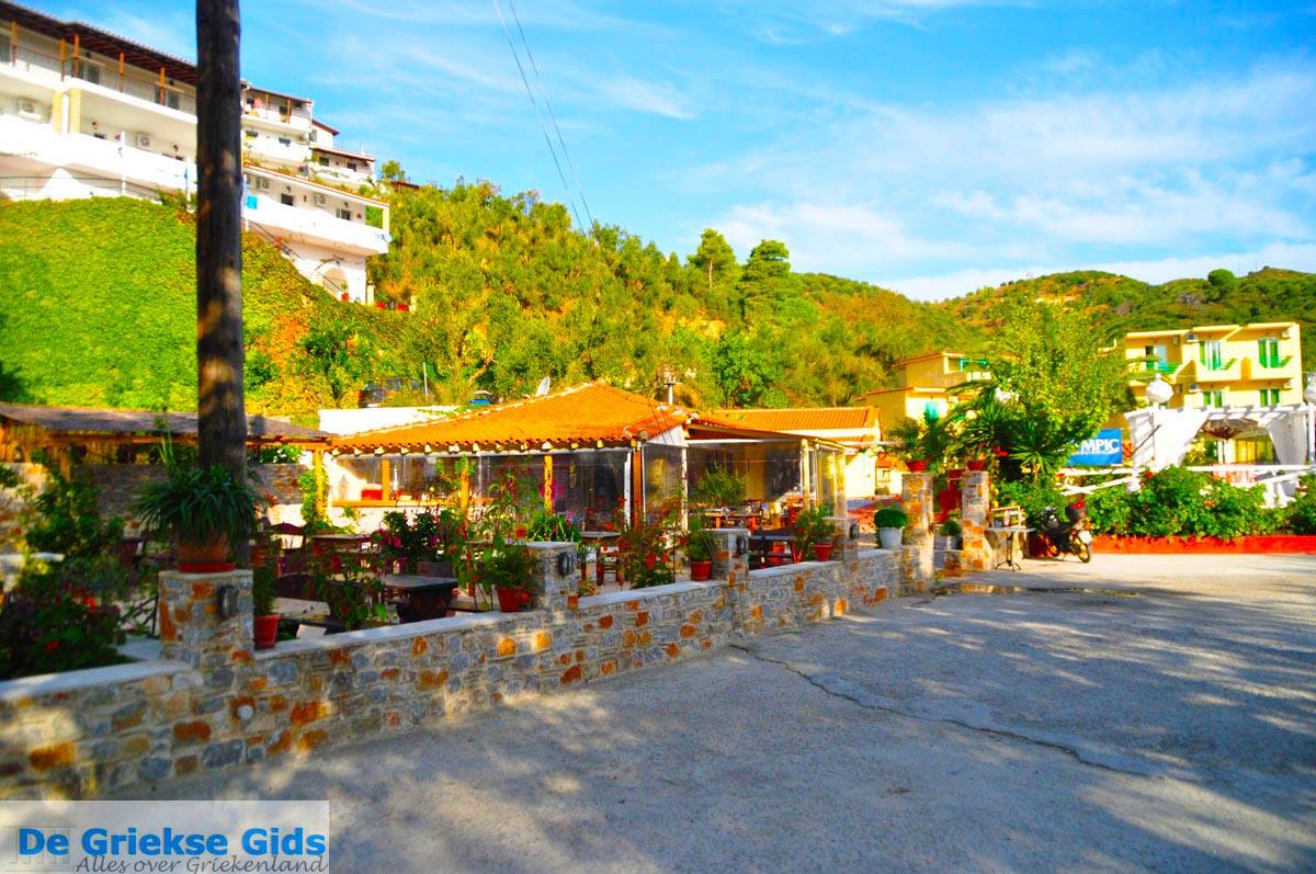 foto Aghia Paraskevi (Platanias beach) | Skiathos Sporaden | De Griekse Gids foto 7