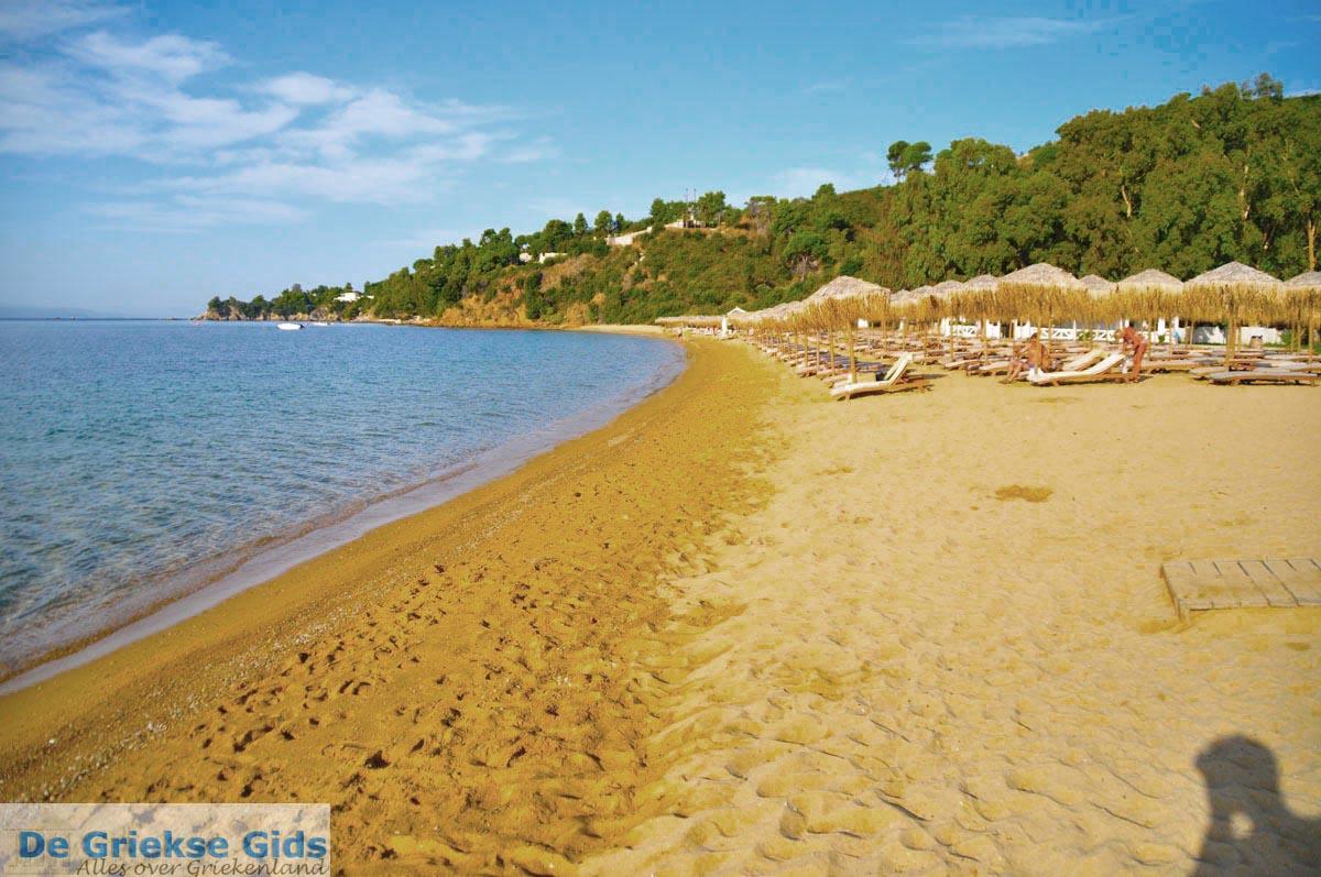 foto Aghia Paraskevi (Platanias beach) | Skiathos Sporaden | De Griekse Gids foto 11