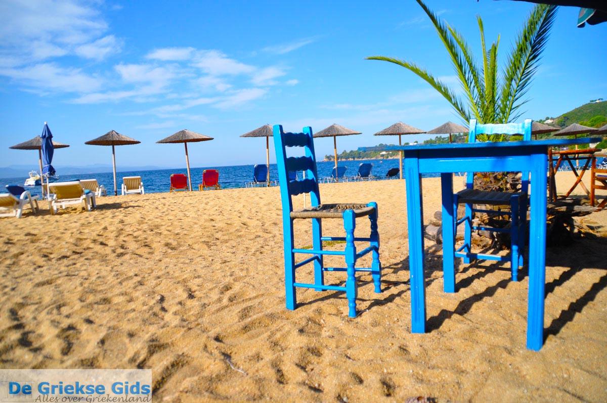 foto Aghia Paraskevi (Platanias beach) | Skiathos Sporaden Griekenland foto 32