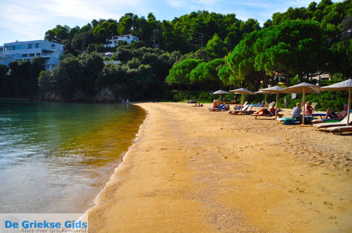 foto Tzaneria | Skiathos Sporaden Griekenland foto 8