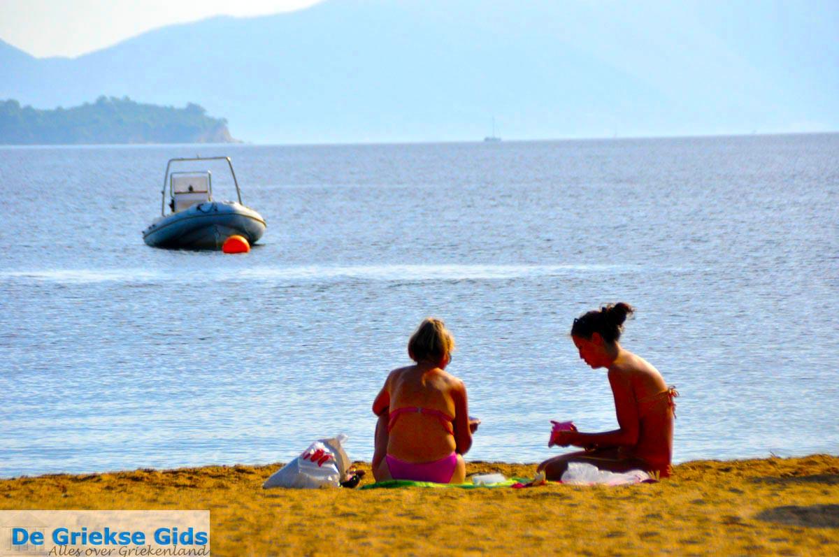 foto Tzaneria | Skiathos Sporaden | De Griekse Gids foto 14