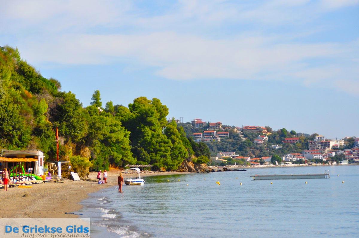 foto Vassilias | Skiathos Sporaden | De Griekse Gids foto 11