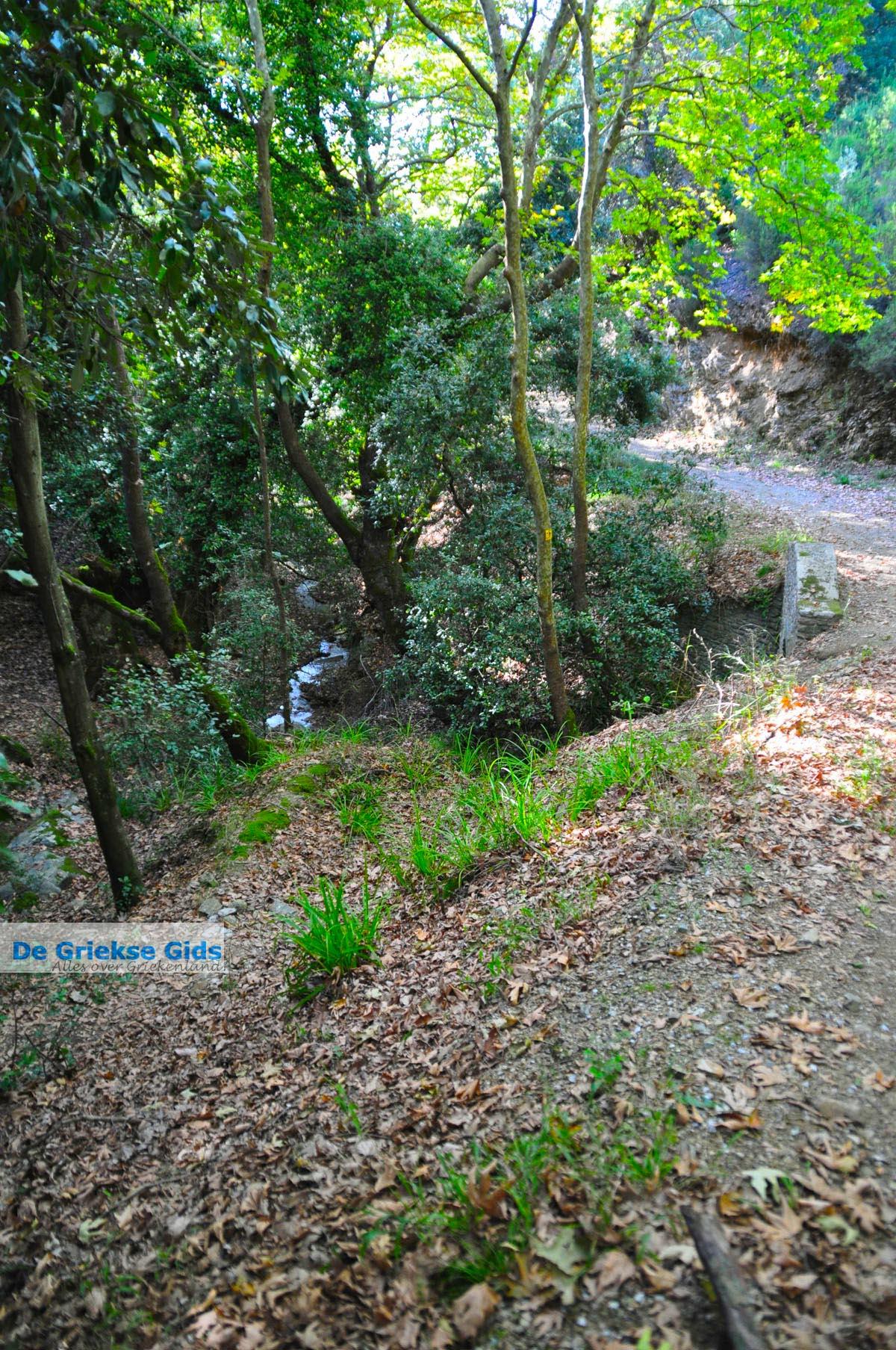 foto Wandelpaden bij Klooster Kechria | Skiathos Sporaden Griekenland foto 2