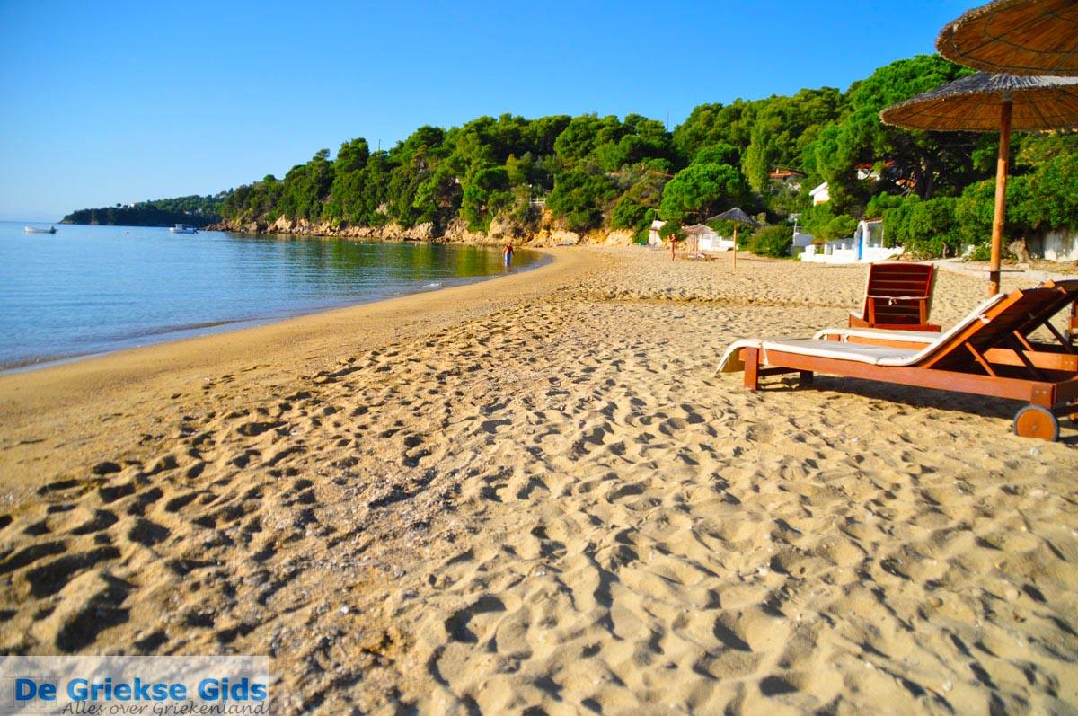 foto Achladies | Skiathos Sporaden Griekenland foto 16