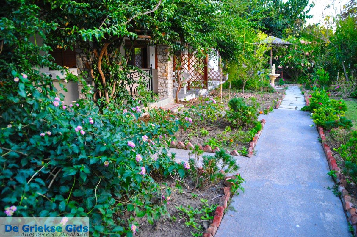foto Maniatis Garden Achladies | Skiathos Sporaden | De Griekse Gids foto 5