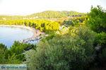 Koukounaries | Skiathos Sporaden | De Griekse Gids foto 2 - Foto van De Griekse Gids