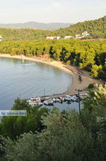 Koukounaries | Skiathos Sporaden | De Griekse Gids foto 3 - Foto van De Griekse Gids