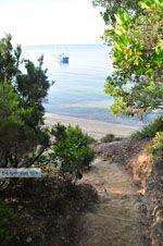 Maratha beach bij Koukounaries | Skiathos Sporaden | De Griekse Gids foto 3 - Foto van De Griekse Gids