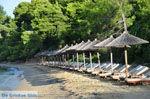 Maratha beach bij Koukounaries | Skiathos Sporaden | De Griekse Gids foto 9 - Foto van De Griekse Gids