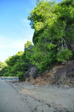 Maratha beach bij Koukounaries | Skiathos Sporaden | De Griekse Gids foto 13 - Foto van De Griekse Gids