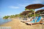 Troulos beach | Skiathos Sporaden | De Griekse Gids foto 10 - Foto van De Griekse Gids