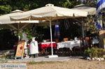 Troulos beach | Skiathos Sporaden | De Griekse Gids foto 15 - Foto van De Griekse Gids