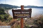 Aghia Paraskevi (Platanias beach) | Skiathos Sporaden | De Griekse Gids foto 1 - Foto van De Griekse Gids