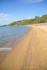 Aghia Paraskevi (Platanias beach) | Skiathos Sporaden | De Griekse Gids foto 14 - Foto van De Griekse Gids