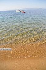 Aghia Paraskevi (Platanias beach) | Skiathos Sporaden | De Griekse Gids foto 17 - Foto van De Griekse Gids