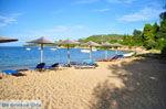 Aghia Paraskevi (Platanias beach)   Skiathos Sporaden   De Griekse Gids foto 22 - Foto van De Griekse Gids